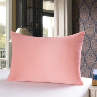 シャンパン色のシルク枕カバー ピローケース